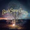 Cover of the album Family Tree