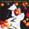 Cover of the album Fireball Zone