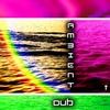 Couverture de l'album Ambient Dub