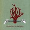 Couverture de l'album Aboa Sleeping