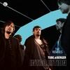 Couverture de l'album Introlution (Remixed)