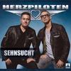 Couverture de l'album Sehnsucht