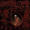 Cover of the album Torture