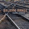 Cover of the album Trains I Missed
