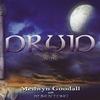 Couverture de l'album Druid II