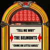 Cover of the album Tell Me Why / Come On Little Angel - Single
