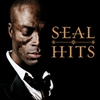 Cover of the album Seal Hits