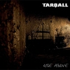 Cover of the album Rise Above