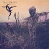Cover of the album Tau Cross