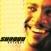Cover of the track Hot Shot