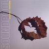 Cover of the album Dichotomies & Dreamland