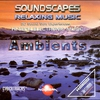 Couverture de l'album Soundscapes Relaxing Music: Ambients