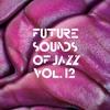 Couverture de l'album Future Sounds of Jazz Vol. 12