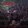 Couverture de l'album Effigy of the Forgotten