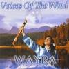 Couverture de l'album Voices of the Wind