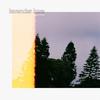 Couverture de l'album Lavender Love - Single