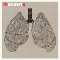 Couverture du titre Collapsible Lung