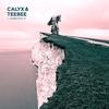 Couverture de l'album FabricLive 76: Calyx & TeeBee