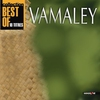 Cover of the album Vamaley Best Of