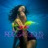 Couverture de l'album Reggae Gold 2008