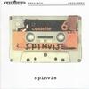 Couverture de l'album Spinvis
