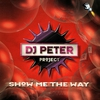 Cover of the album Show Me the Way - Single