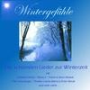 Couverture de l'album Wintergefühle