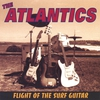 Couverture de l'album Flight of the Surf Guitar