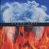 Cover of the album Fallen Angel