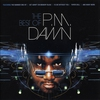 Couverture de l'album The Best of P.M. Dawn