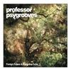 Couverture de l'album Foreign Pulses & Borderline Dubs