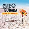 Cover of the album Tudo é possible