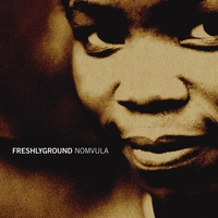 Cover of the track Nomvula