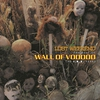 Couverture de l'album Lost Weekend, the Best of Wall of Voodoo (The I.R.S. Years)