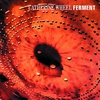 Couverture de l'album Ferment