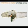 Couverture de l'album Andando El Tiempo