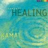 Couverture de l'album Shamanic Healing