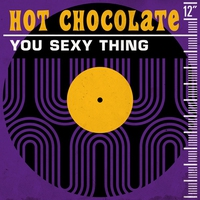 Cover of the track You Sexy Thing