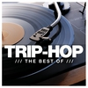 Couverture de l'album The Best of Trip-Hop