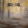 Cover of the album Nebelheim