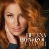 Cover of the album Survivor - Single