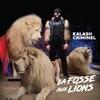 Couverture de l'album La fosse aux lions