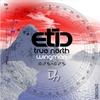 Couverture de l'album True North - Single