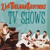 Cover of the album Best of TV Shows (feat. Andy Tielman)