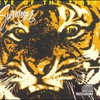 Couverture de l'album Eye of the Tiger (Remastered)