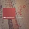 Couverture de l'album Beneath Trembling Lanterns