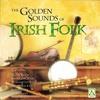 Couverture de l'album The Golden Sounds of Irish Folk