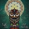Cover of the album Owl Medicine