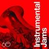 Couverture de l'album Atlantic 60: Instrumental Jams