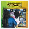 Couverture de l'album Pincoya Calipso - Pasado, Presente y Futuro